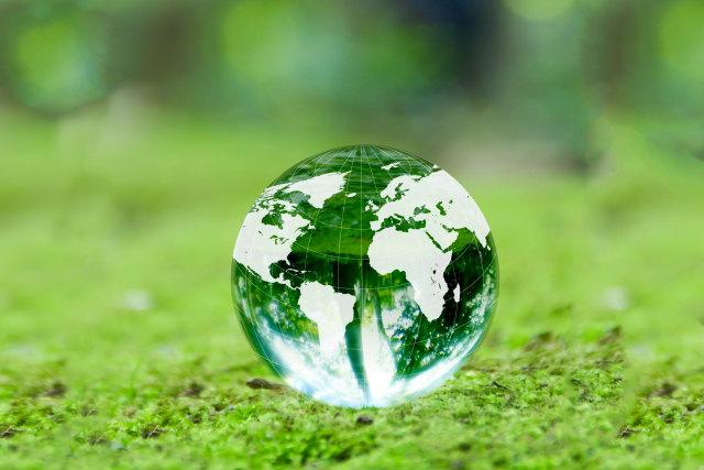 緑の中の地球儀